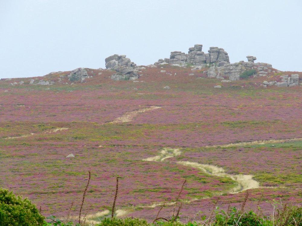 Penwith Moorland