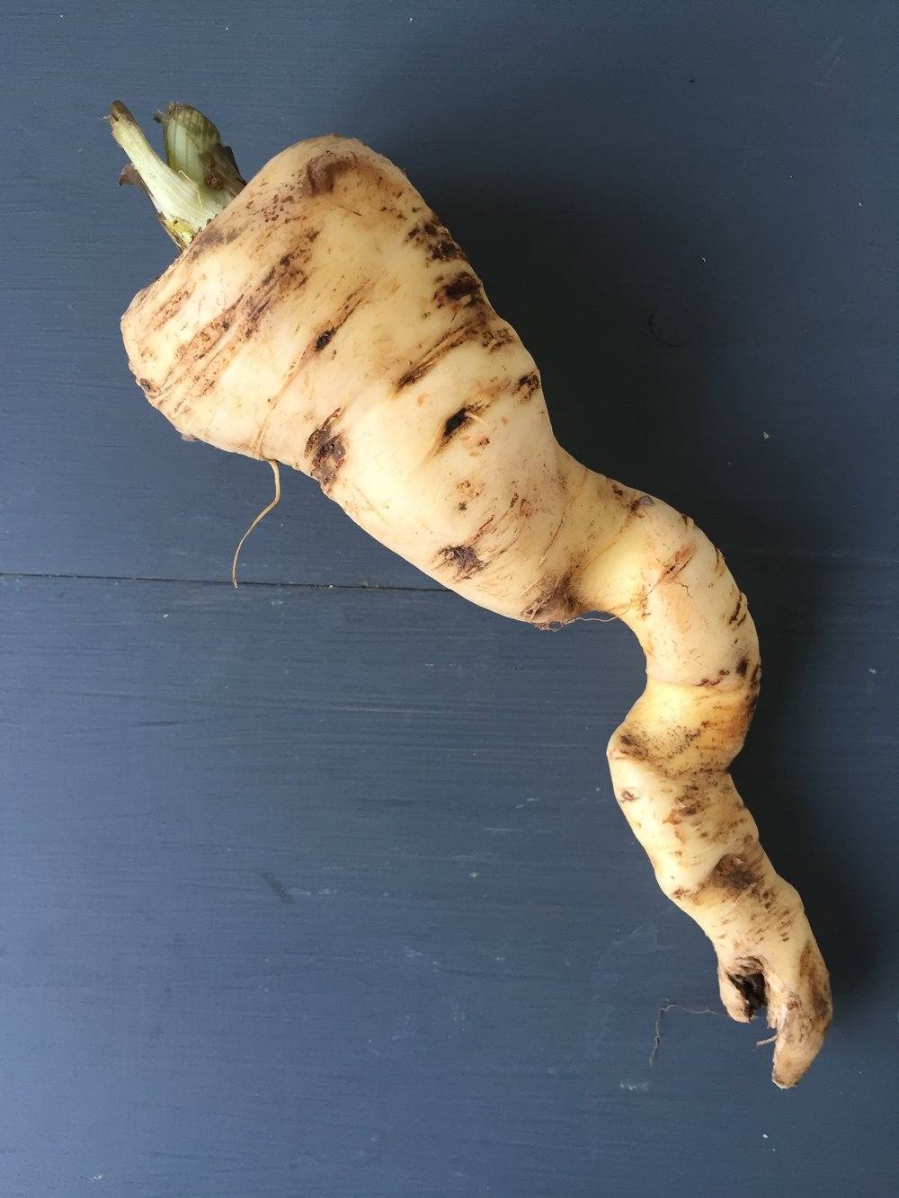 We celebrate wonky veg !
