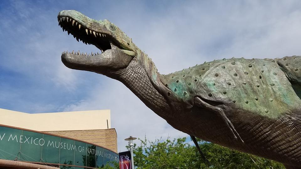 dinosaur museum mexico