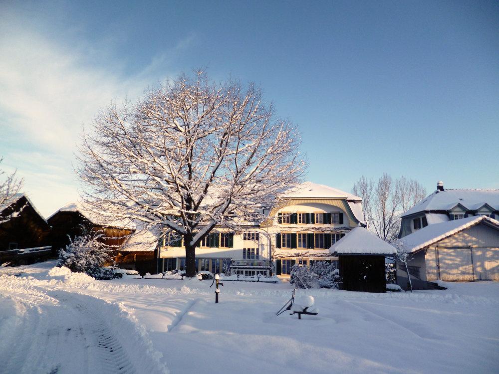 SnowCenter_StyleWeb.jpg