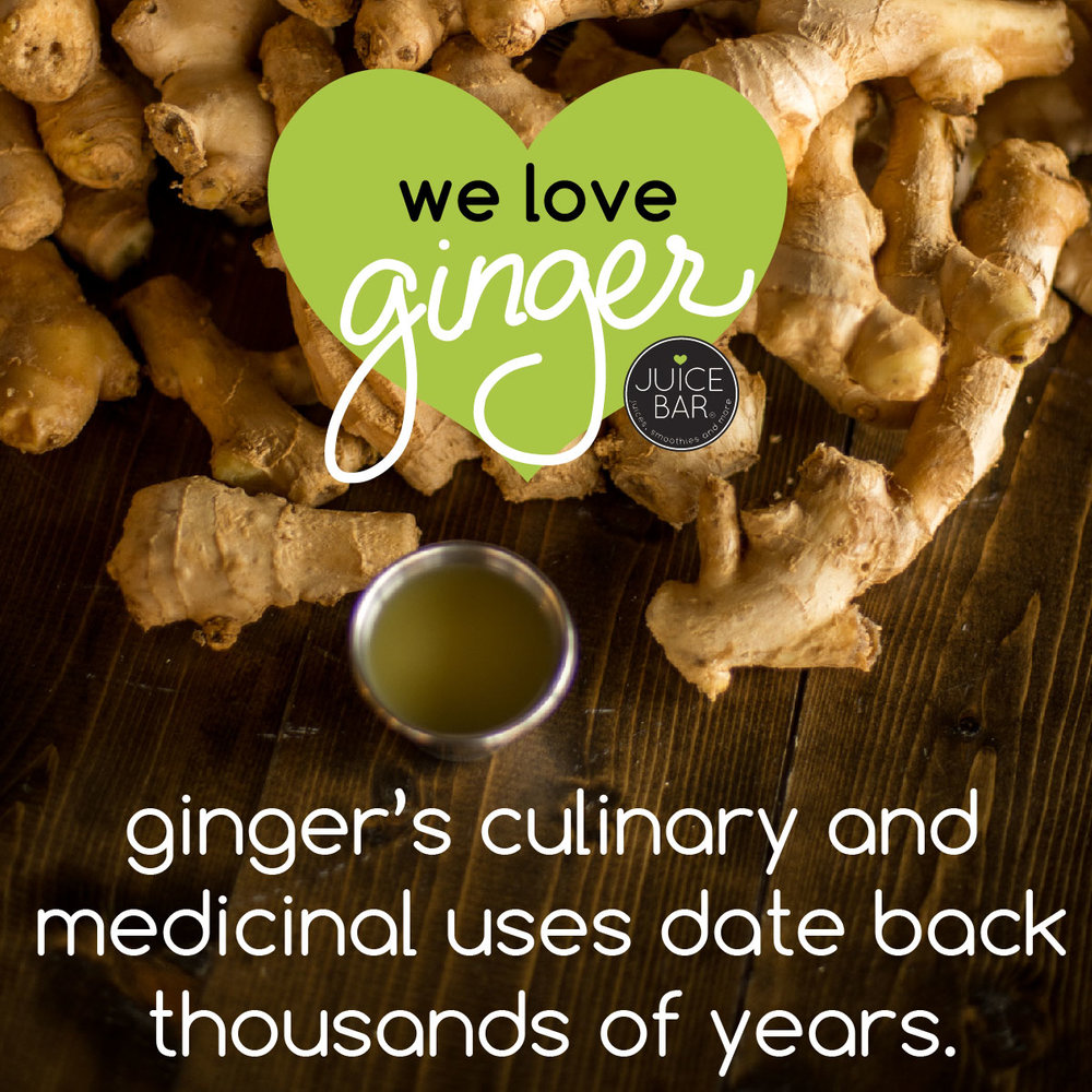 ginger fun facts-03.jpg