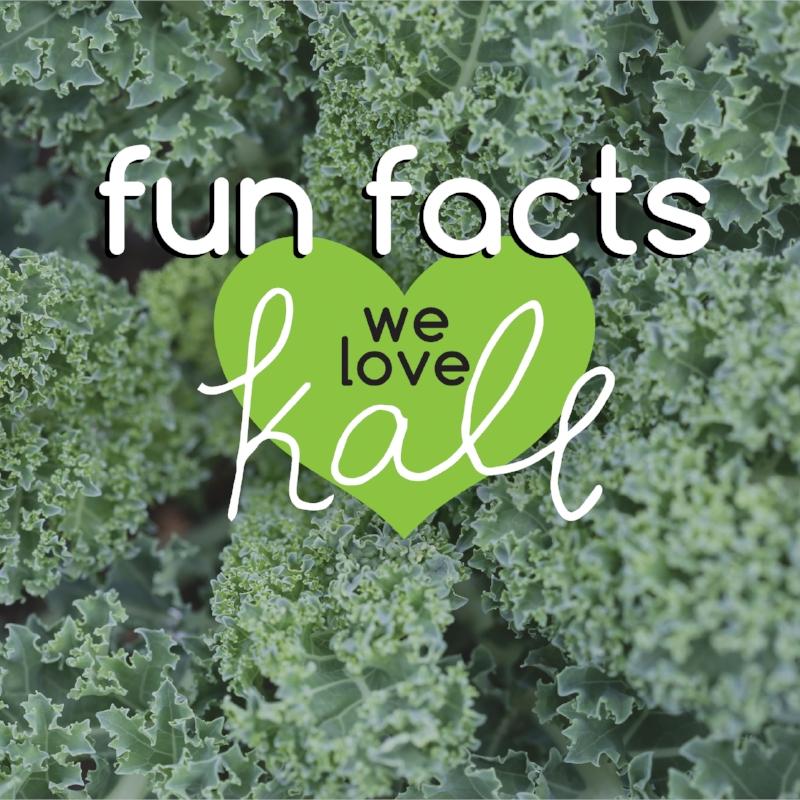 Kale Fun Facts