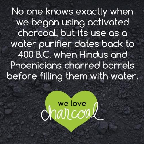 charcoal fun facts-07.jpg