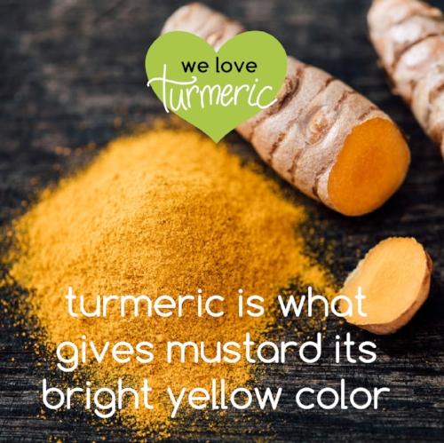 turmeric fun facts-04.jpg