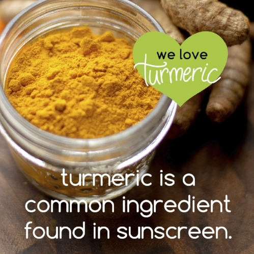 turmeric fun facts-08.jpg