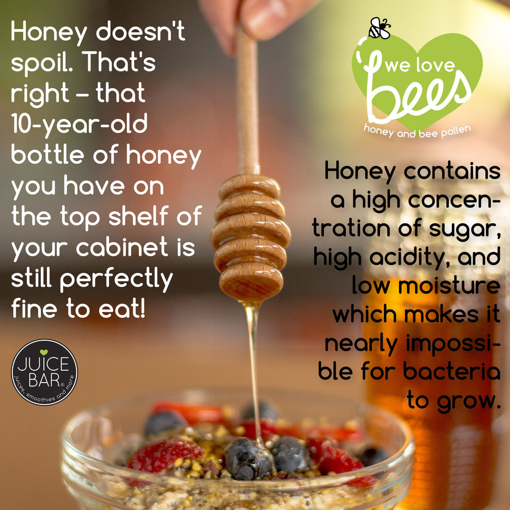 fun facts_WE LOVE BEES-03.jpg