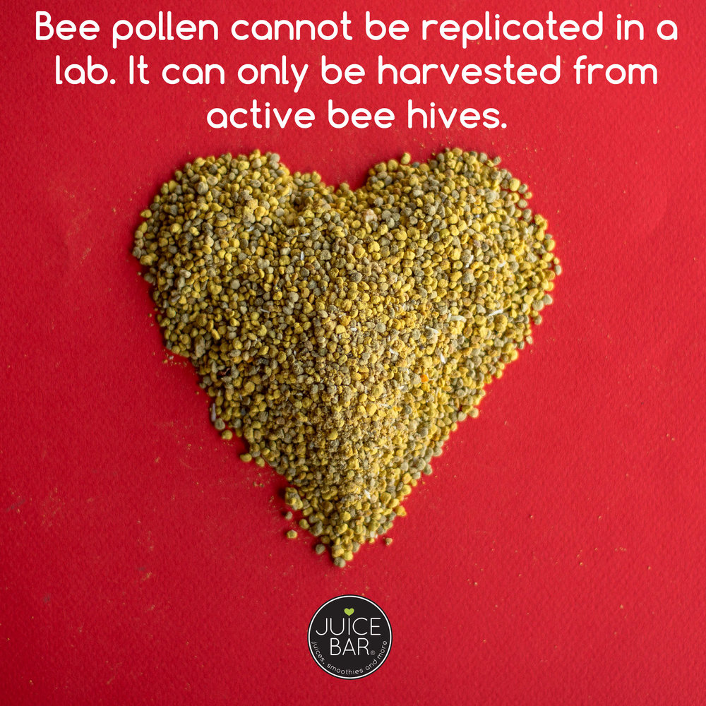 fun facts_WE LOVE BEES-02.jpg