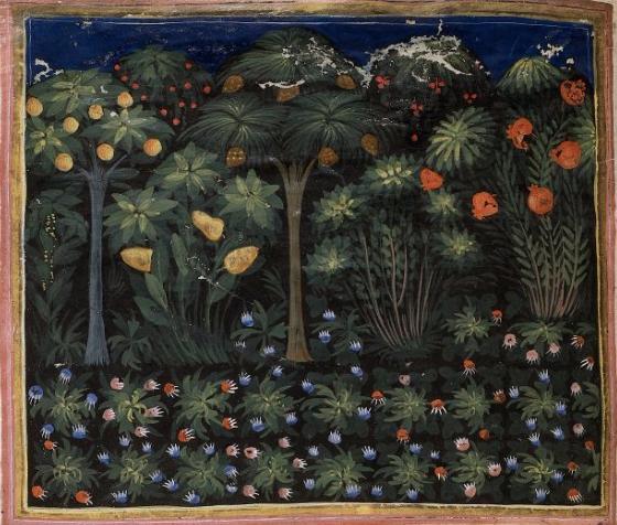 medievalgarden