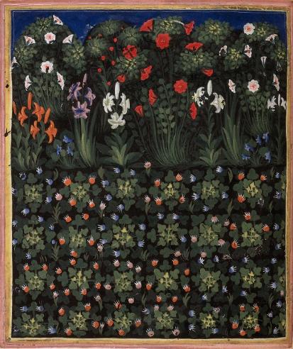 medievalplants
