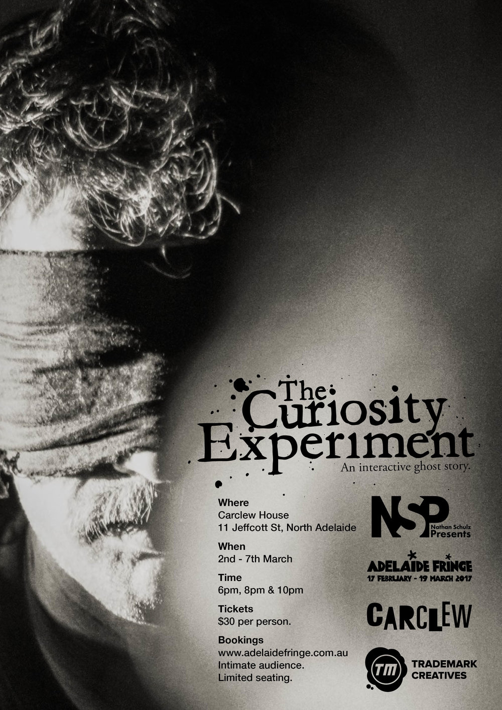The Curiosity Experiment - Poster