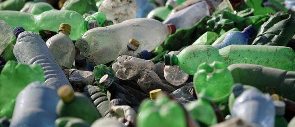 platic bottles.jpg