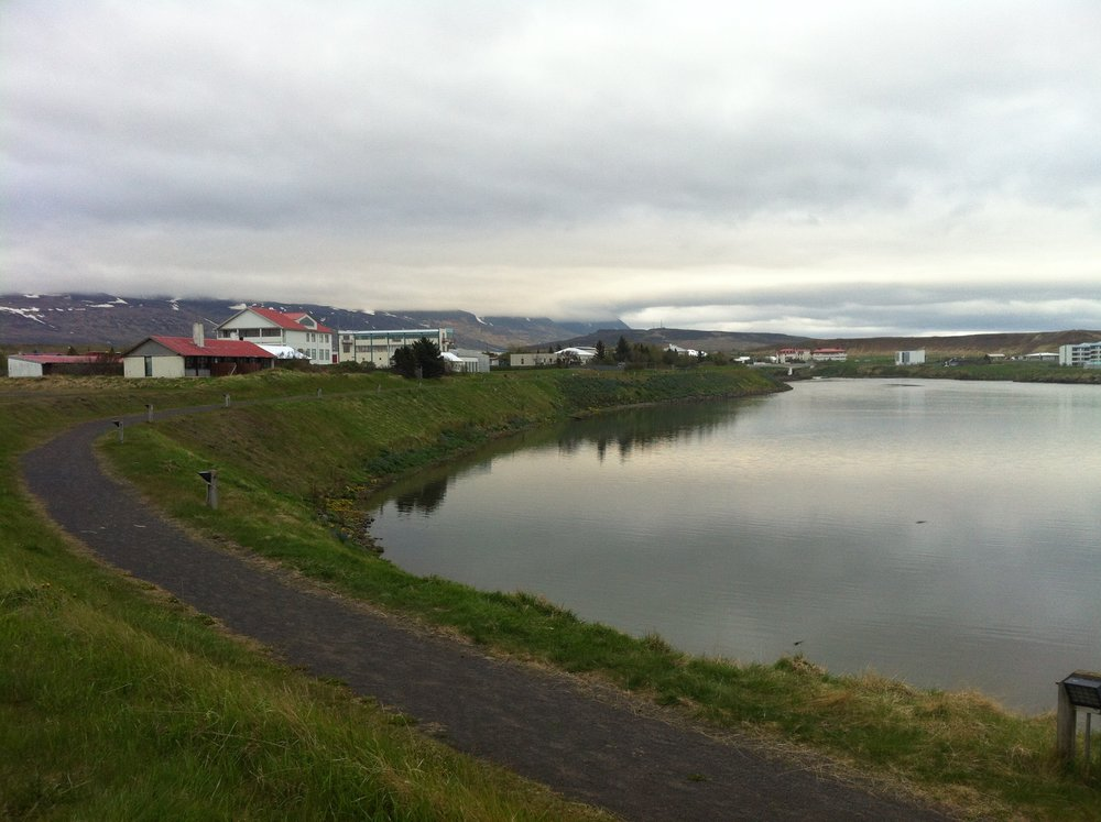 Blönduós, Iceland. June 1, 2016. The red-roofed buildings of the Icelandic Textile Center.