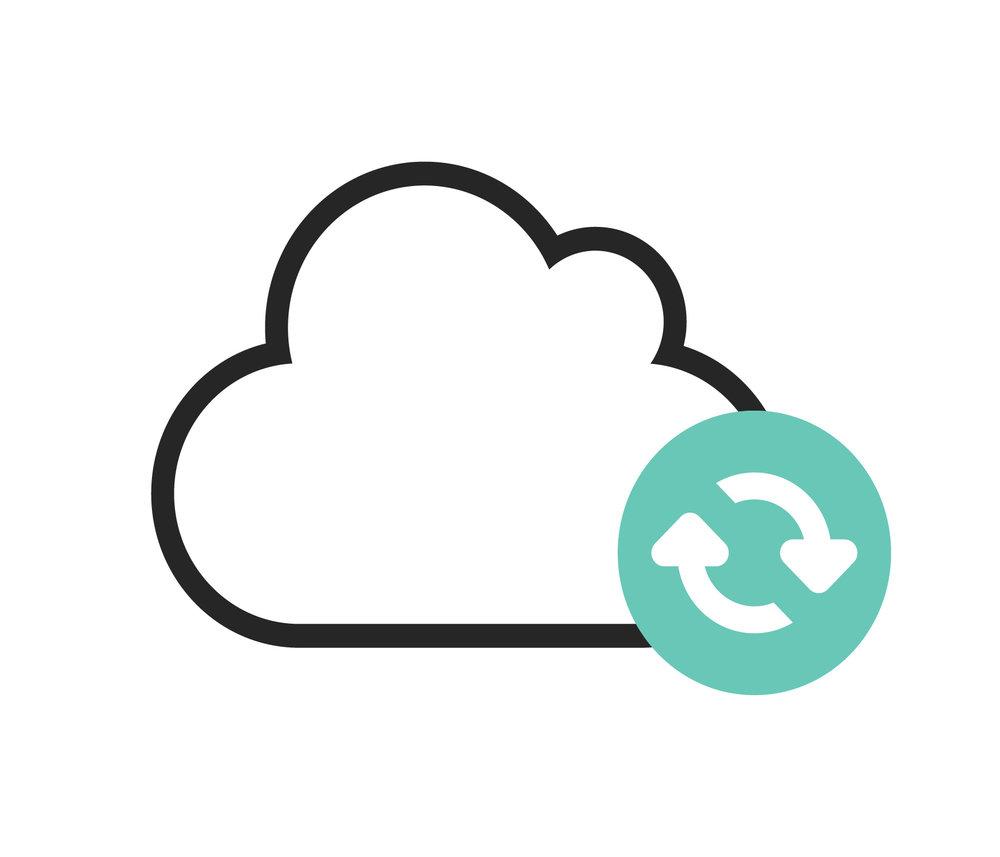 PediNotes Feature - Cloud Based or On-Premises.jpg
