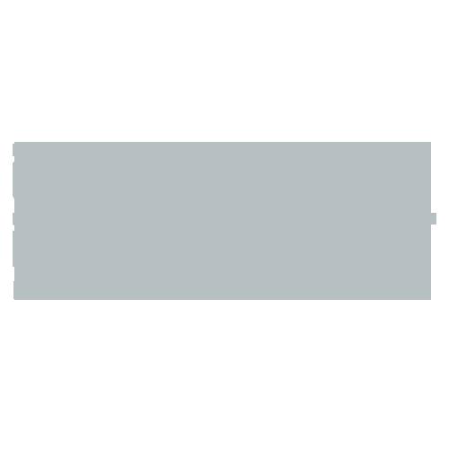 Data_Disrupt_Logo