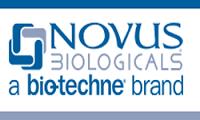 novus.png