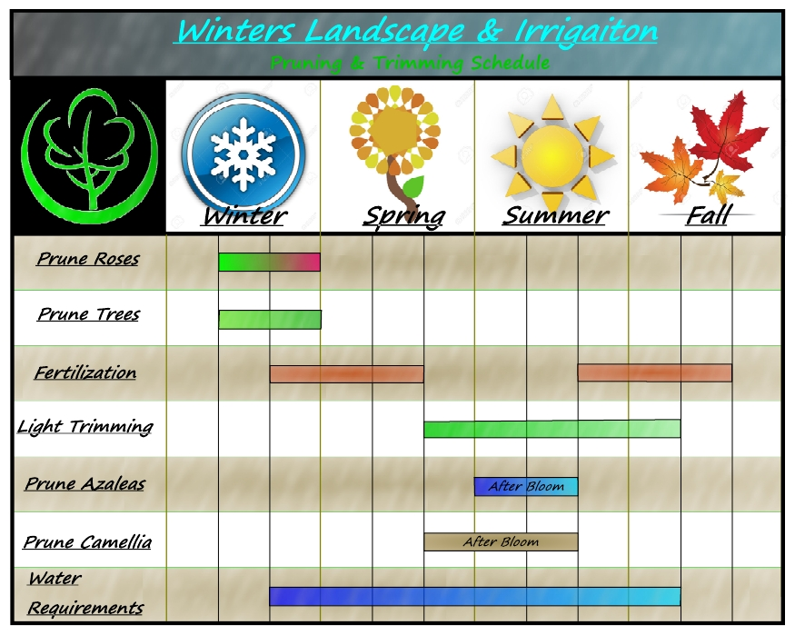 Basic Plant Pruning & Trimming Schedule