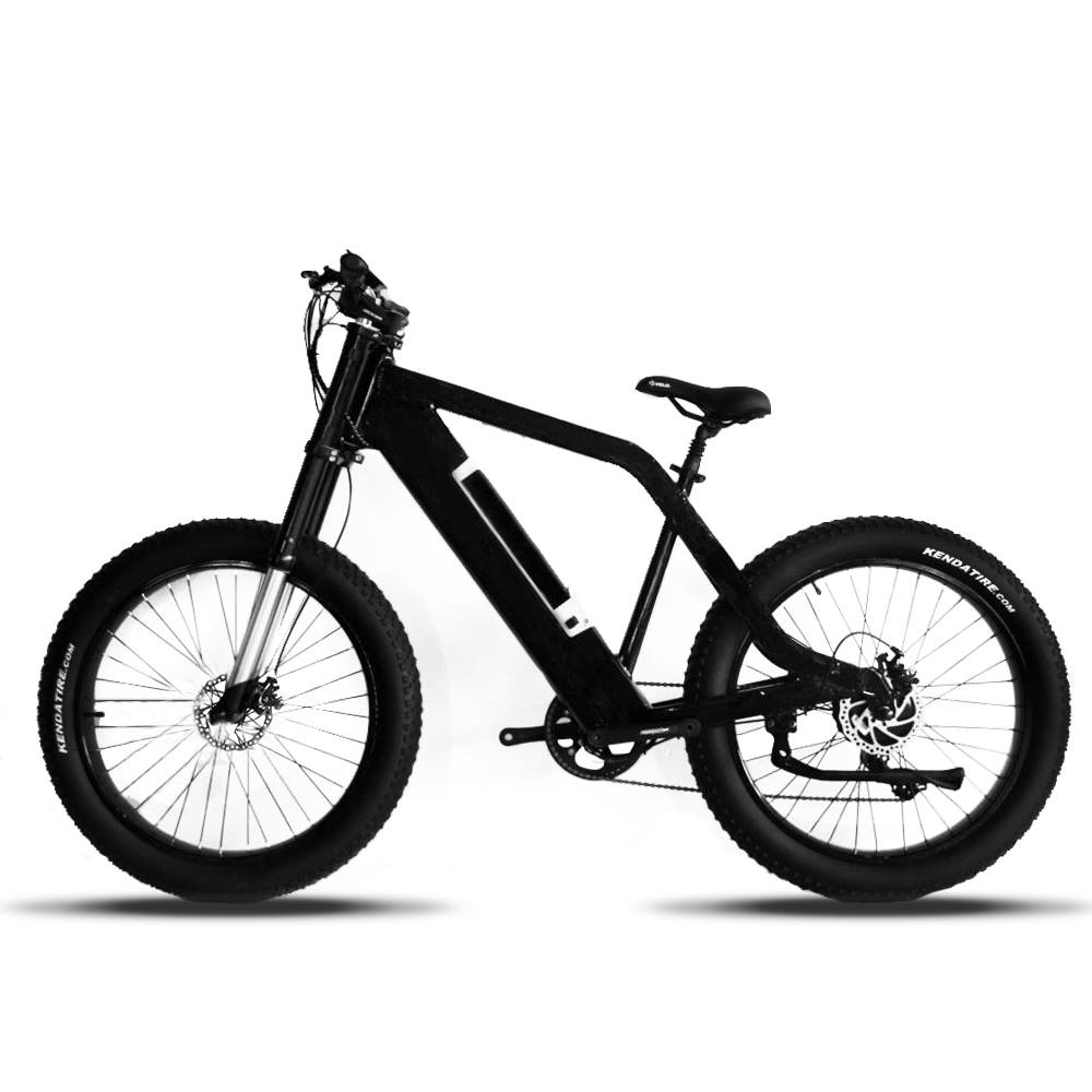 Panther Electric Bike