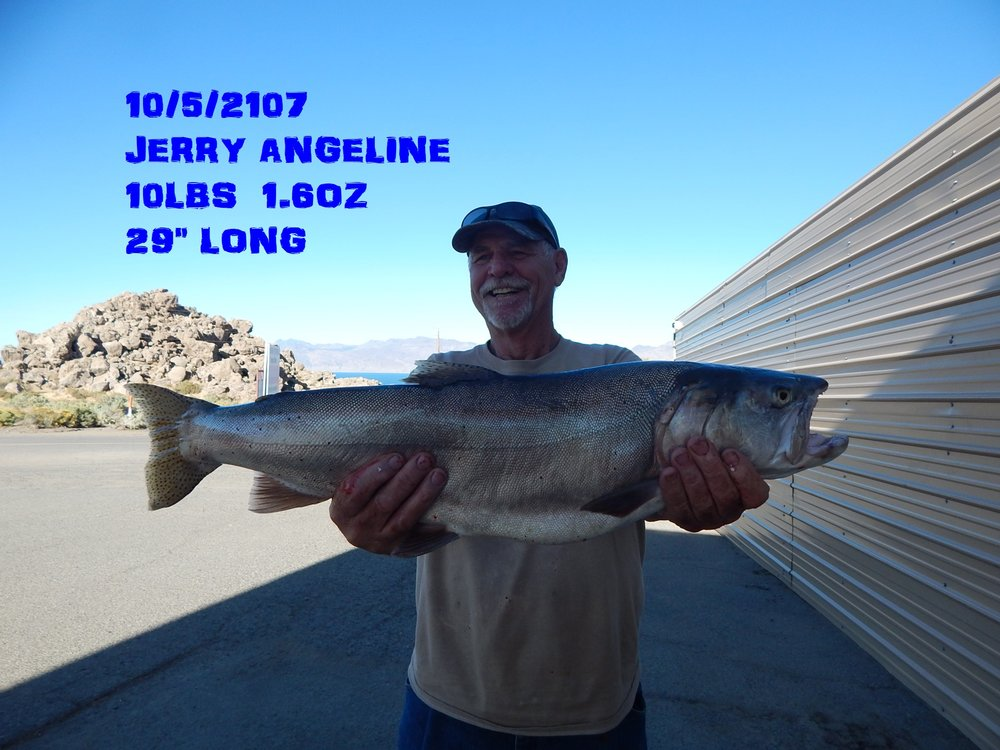 JERRY ANGELINE 10-5-17.jpg