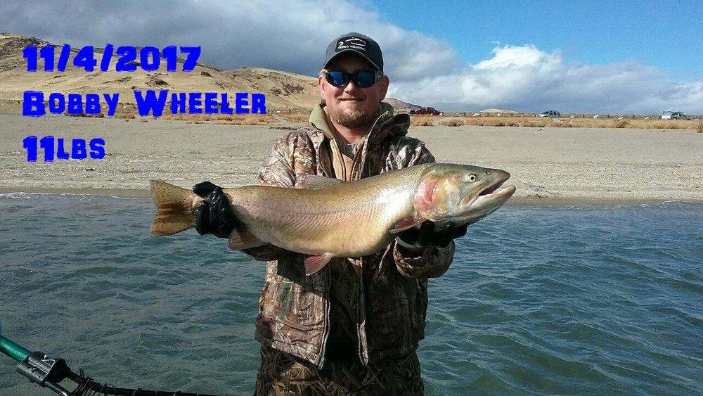 Bobby Wheeler 11-4-17.jpg