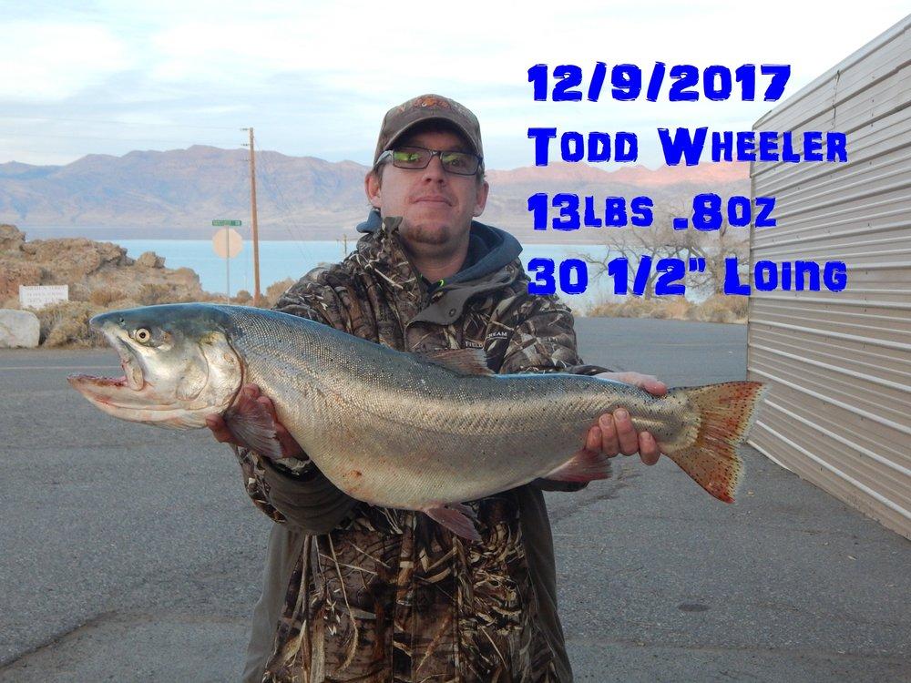 Todd Wheeler 12-9-17.jpg
