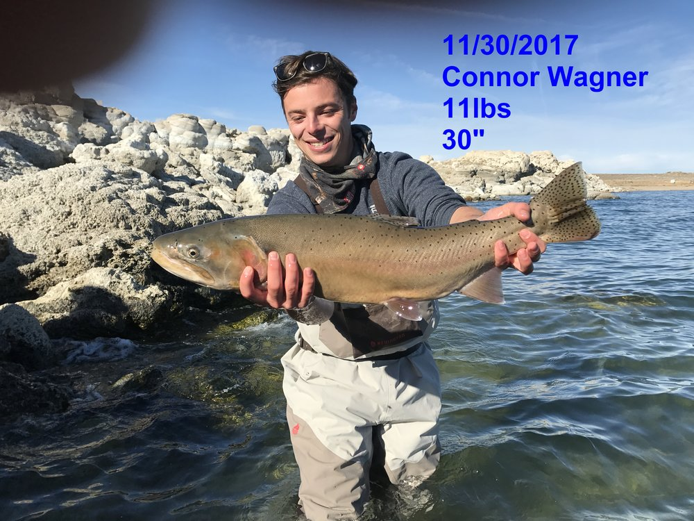 Connor Wagner 11-30-17- catch and release.jpg