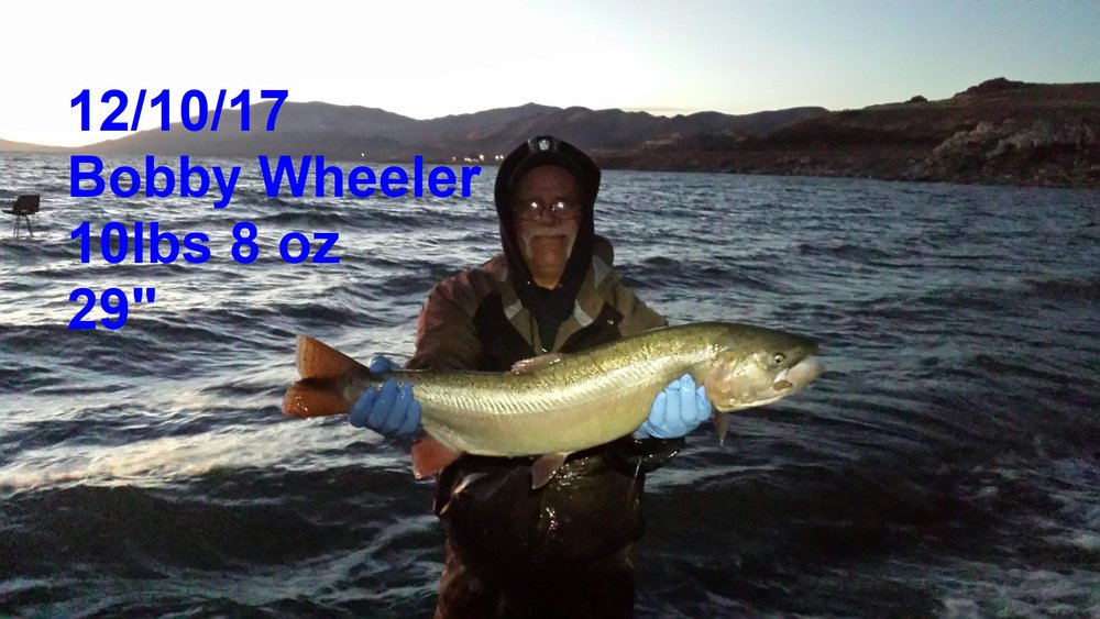 Bobby Wheeler 12-10-17 - catch and release.jpg