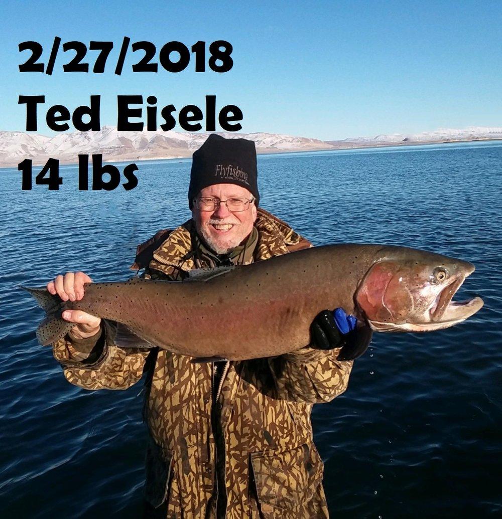 Ted Eisele 2-27-18.jpg