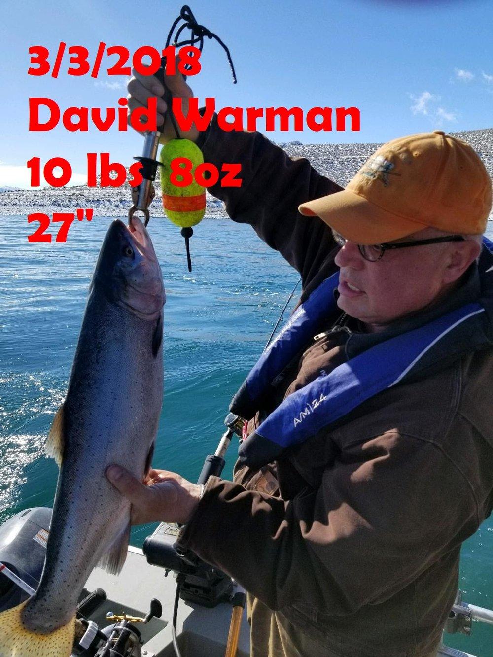 David Warman 3-3-18.jpg