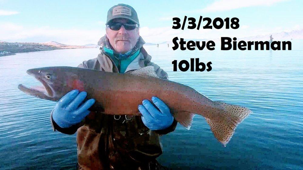 Steve Bierman 3-3-18.jpg