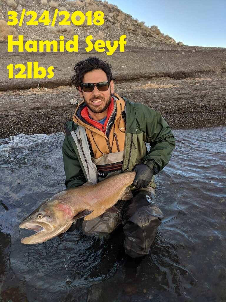 Hamid Seyf 3-24-18.jpg