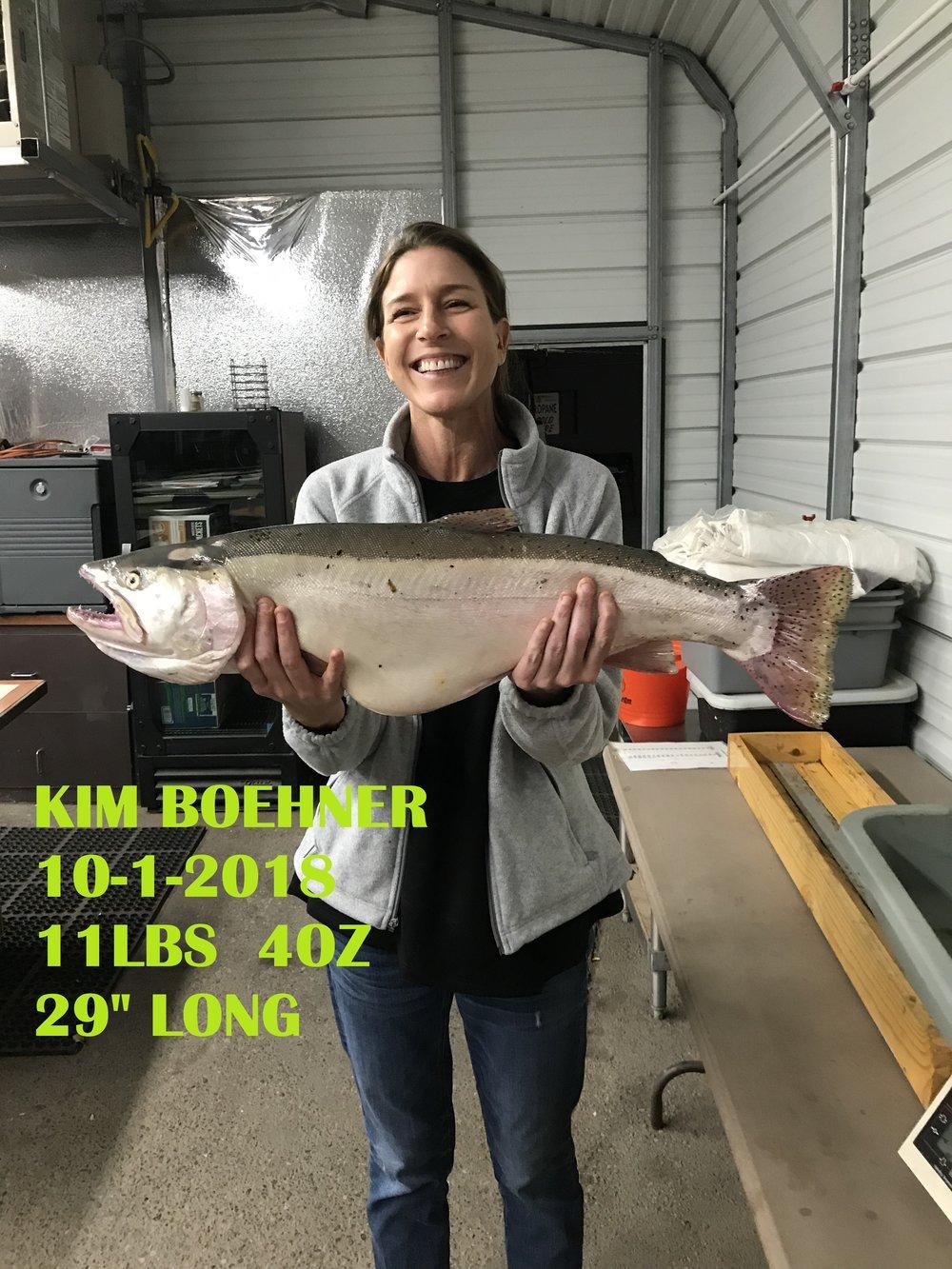KIM BOEHNER 10-1-18.jpg