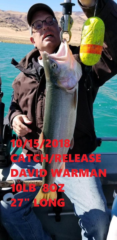 DAVID WARMAN 10-15-18.jpg