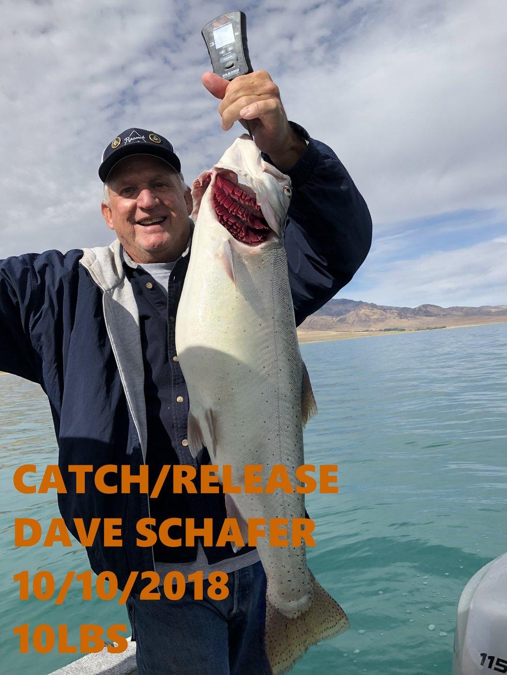 DAVE SCHAFER 10-10-18.jpg