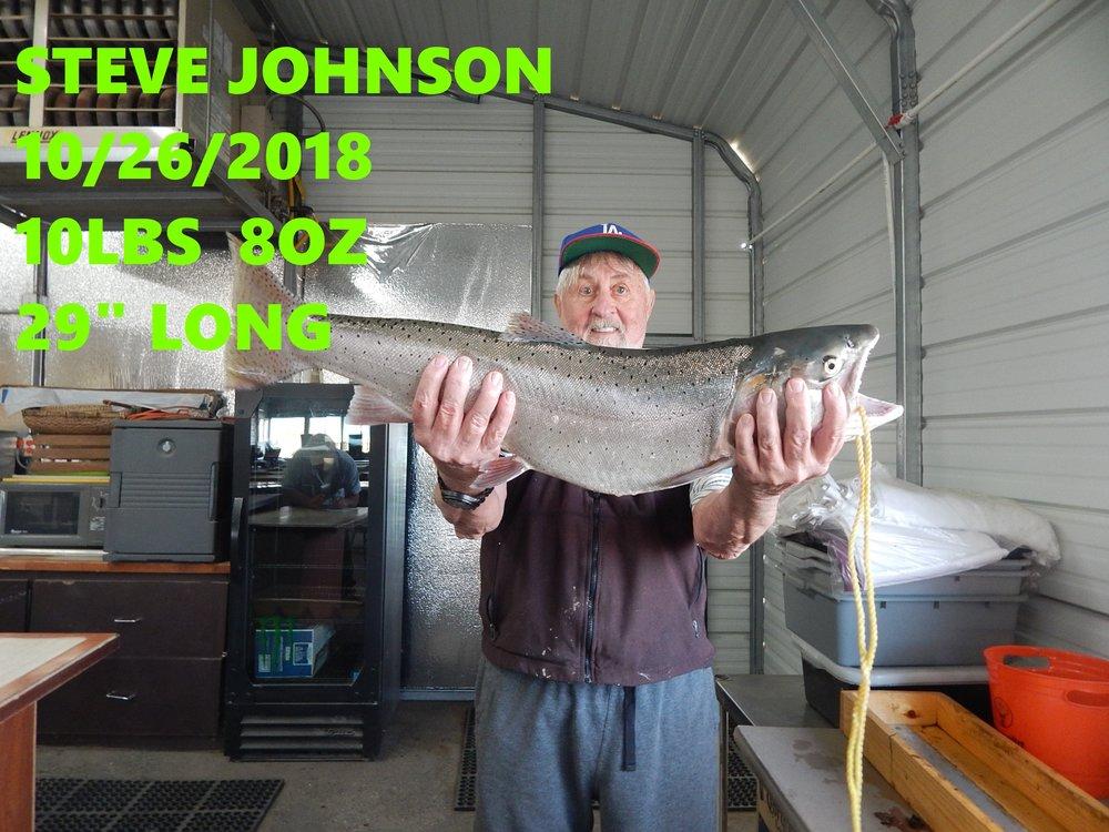 STEVE JOHNSON.jpg
