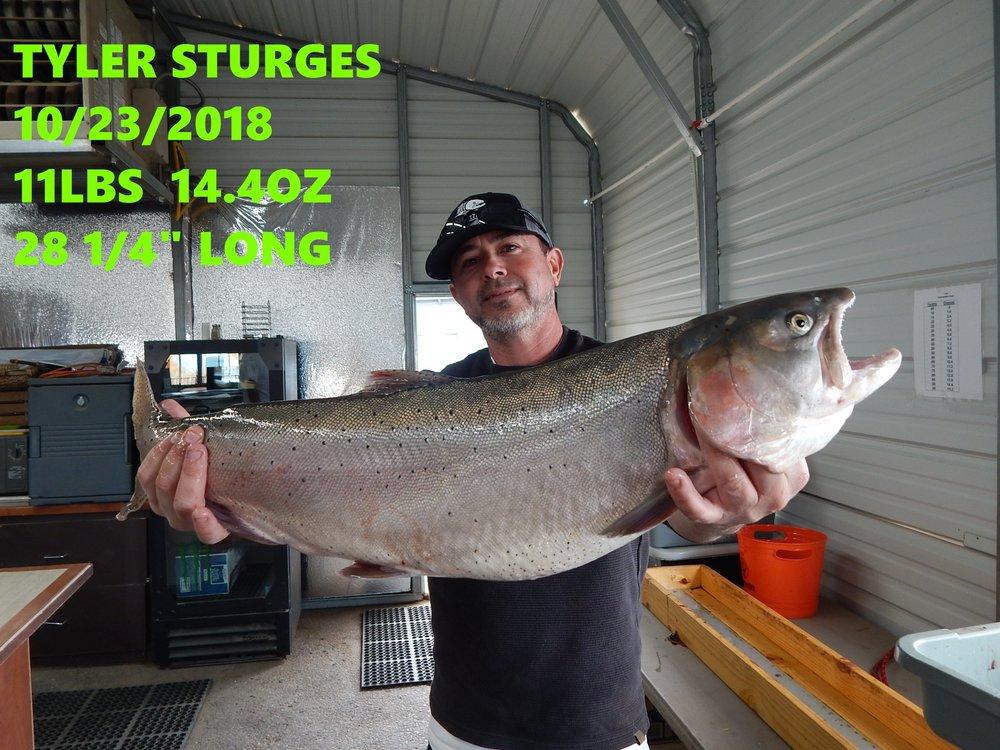TYLER STURGES 10-23-18.jpg