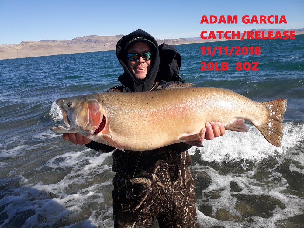 ADAM GARCIA 11-11-18.jpg