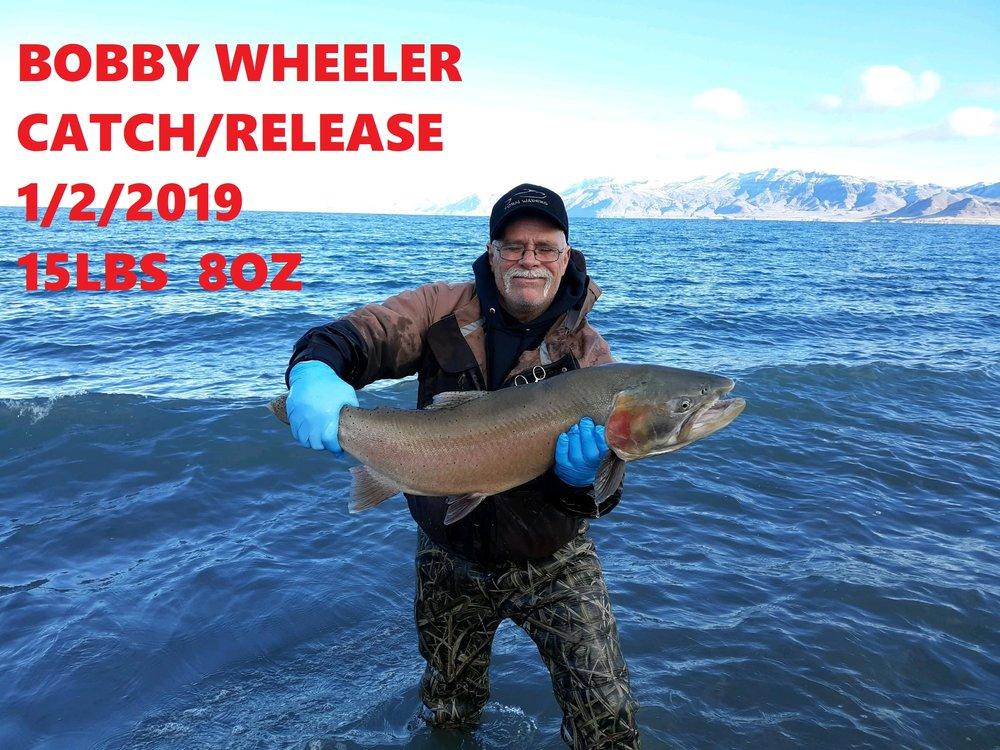 BOBBY WHEELER 1-2-19.png