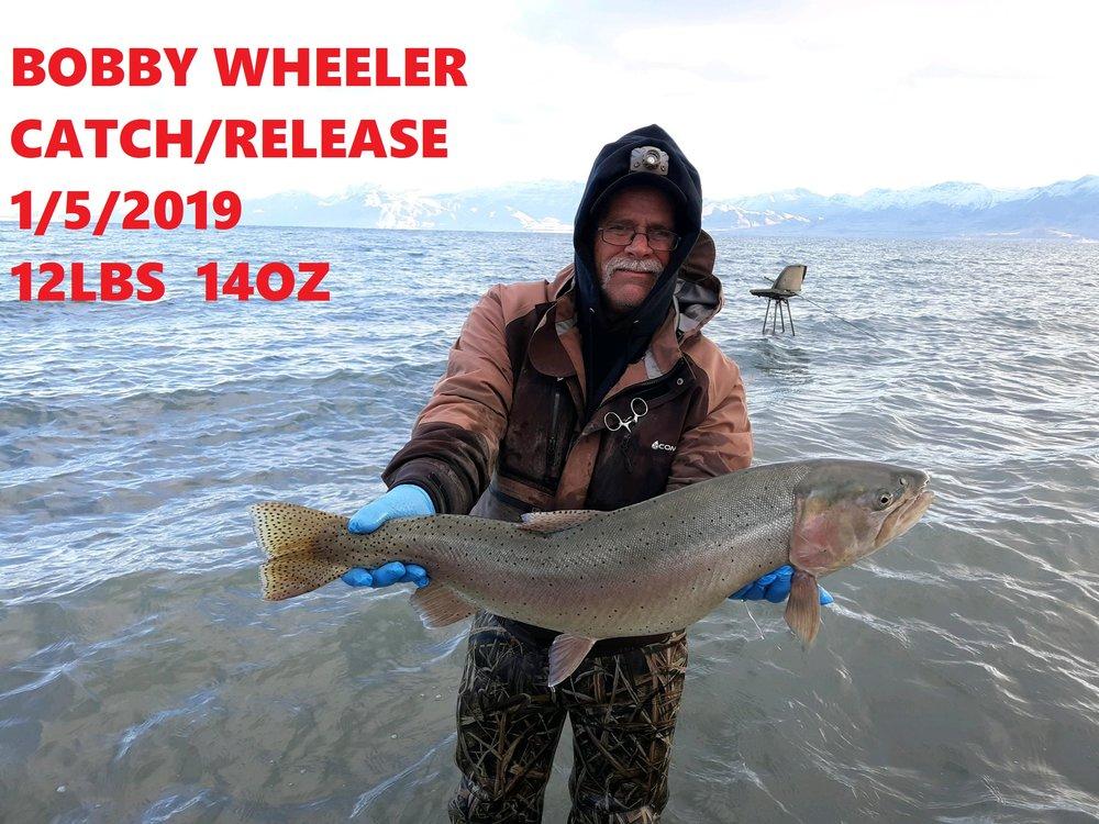 BOBBY WHEELER 1-5-19.jpg