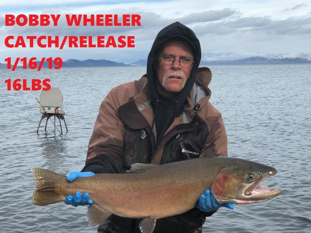 BOBBY WHEELER 1-16-19.jpg