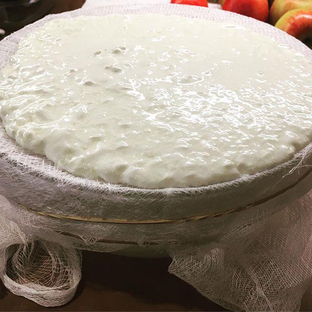 #Greek #yogurt in the making #buckscounty #bread #buckscountypa #🍞 #🇬🇷