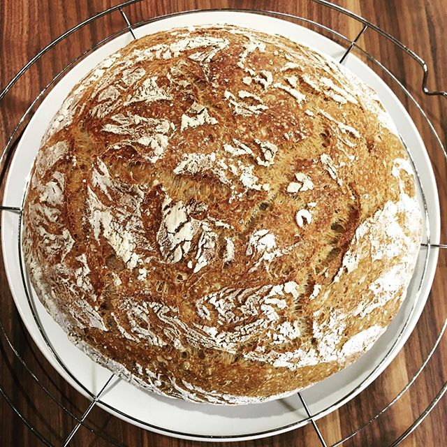 """One """"pretty sure we just lost our home in a devastating hurricane"""" loaf of BCB coming your way, @detachedandamused! 5% whole wheat 5% rye (courtesy of @cvmllc) harvest bread with #poolish and #whey. #buckscounty #bread #buckscountypa #fermentation #🍞"""