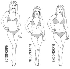 body-type-calculator-2