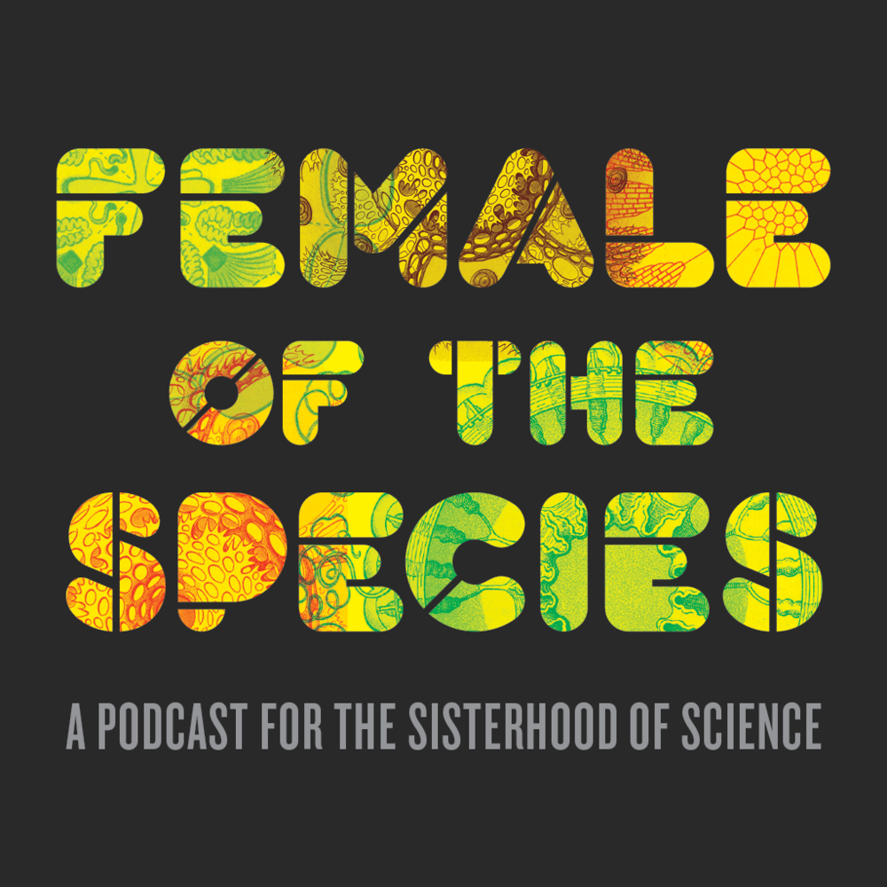 Female_of_the_Species_6.png