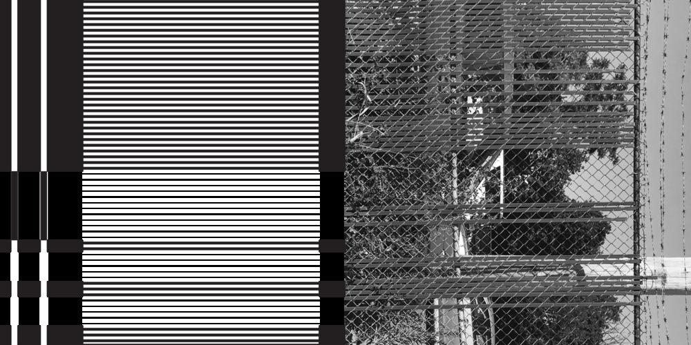 LineStudys+Photos-5.png