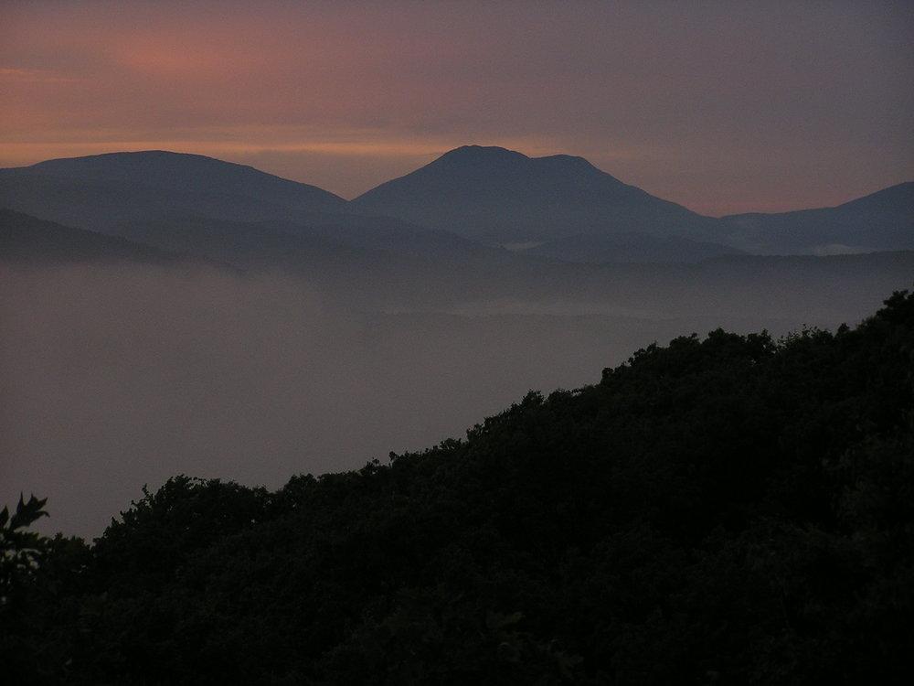 Snake_Sunset.jpg