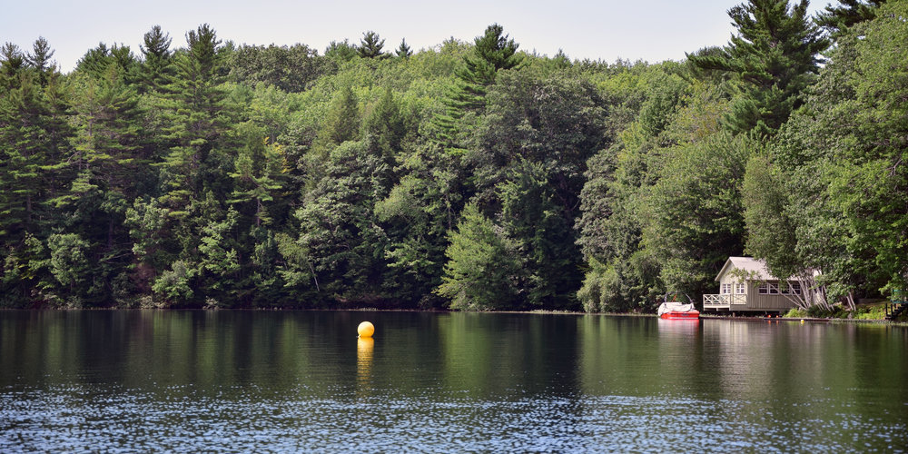 Camp Cedar    CEDAR C'S    Contact Us Today