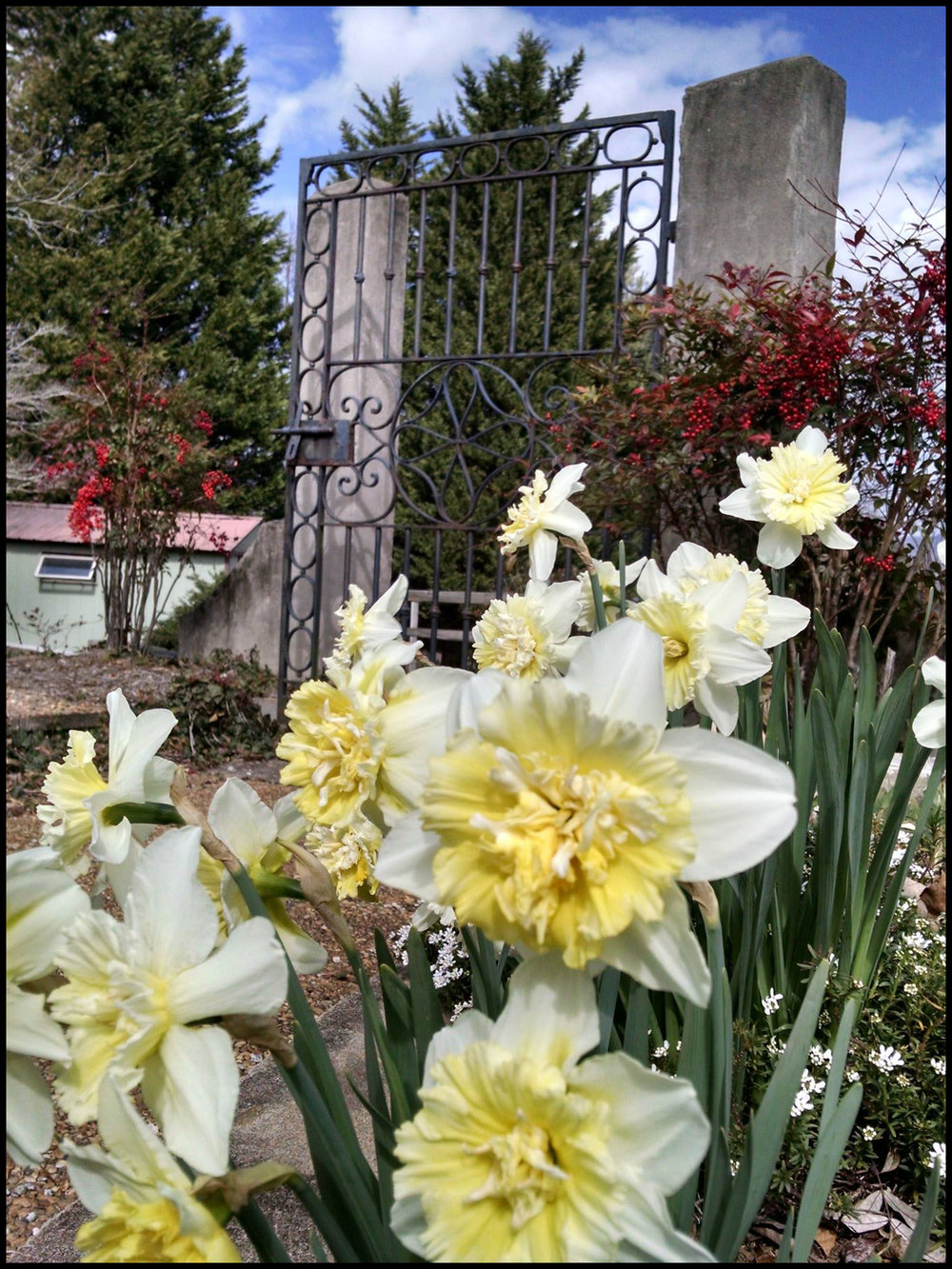 Gardens01.jpg