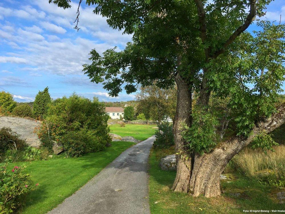 """Gamle Hvaler.  Gamle veier og typiske """"Hvalerhus"""" preger bebyggelsen rundt Langero."""