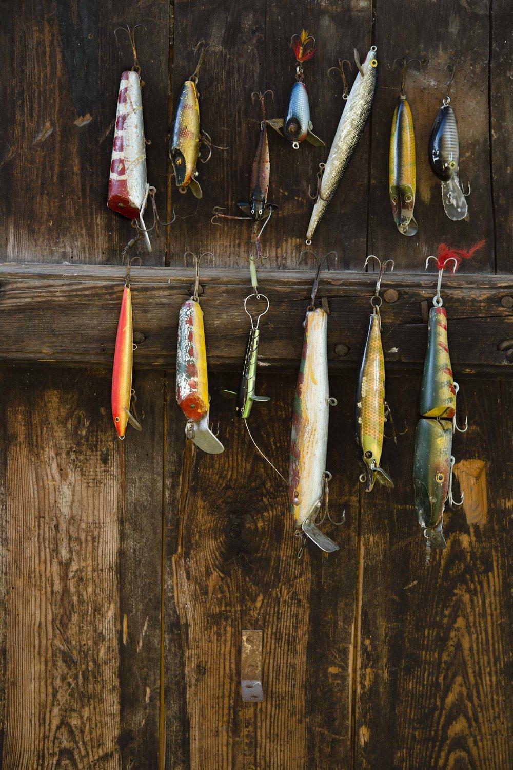 Sjoorret-fiske-97278.jpg
