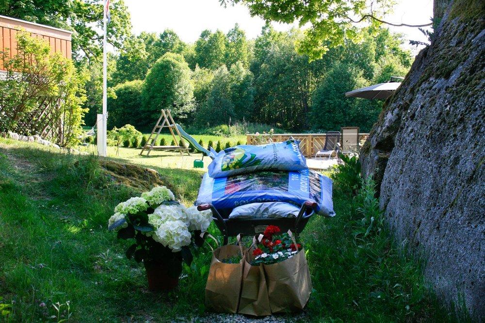 blomster-hvaler-hagesenter-obs-bygg-Lamoyanr2ogHaakavikaSvinevikanr2-039.jpg